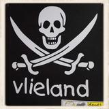 Print met piratenvlag doodshoofd_