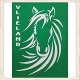 """Hoodie met print """"Vlieland Pony""""_"""