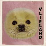 Kinder hoodie met print Hannes_