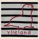 Ecru T-shirt met zeehond_