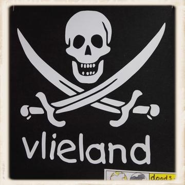 Print met piratenvlag doodshoofd