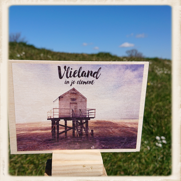 Houten kaart 'Vlieland in je element'