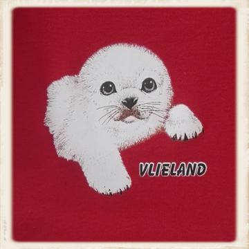 Kinder hoodie met zeehond Snoetje