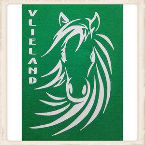 "Kinder sweater met print ""Vlieland Pony"""
