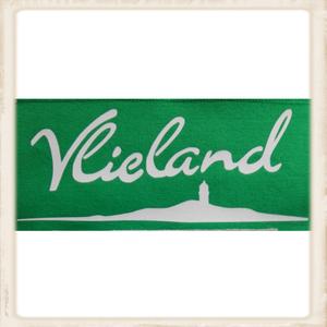 """Hoodie met print """"Vlieland eiland"""""""